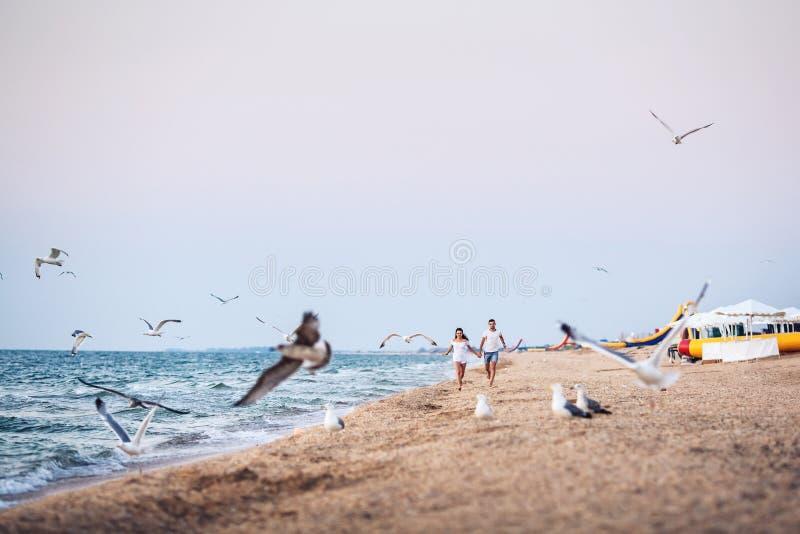 Course d'homme et de femme le long du rivage et effrayer loin les oiseaux marins photos libres de droits