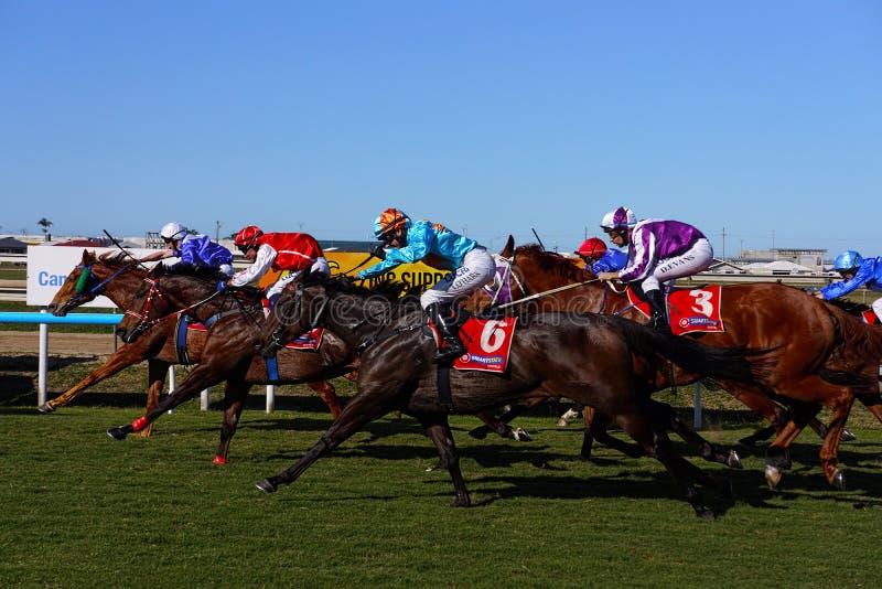 Course de cheval de pays photographie stock