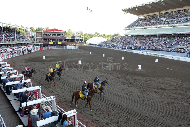 Course de chevaux à la ruée de Calgary photos stock