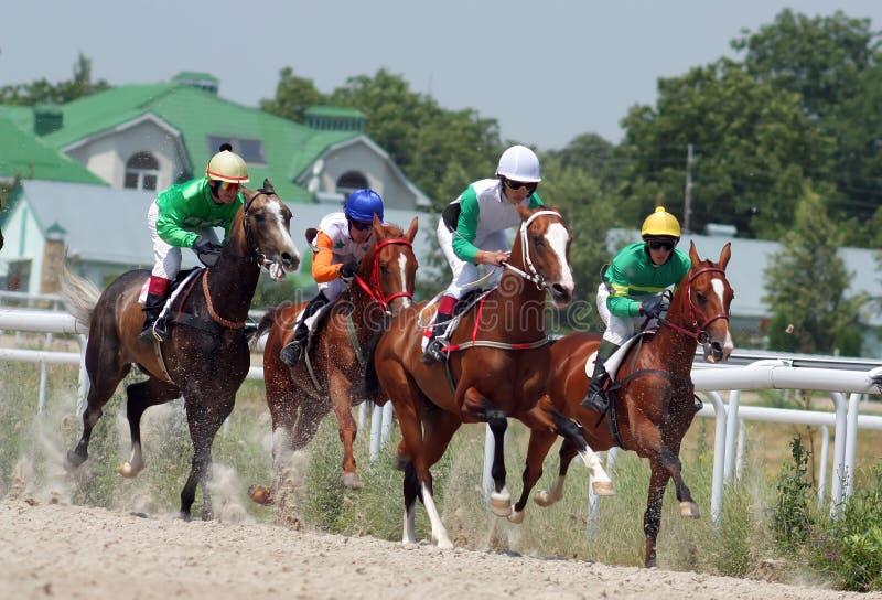 Course de chevaux. image libre de droits