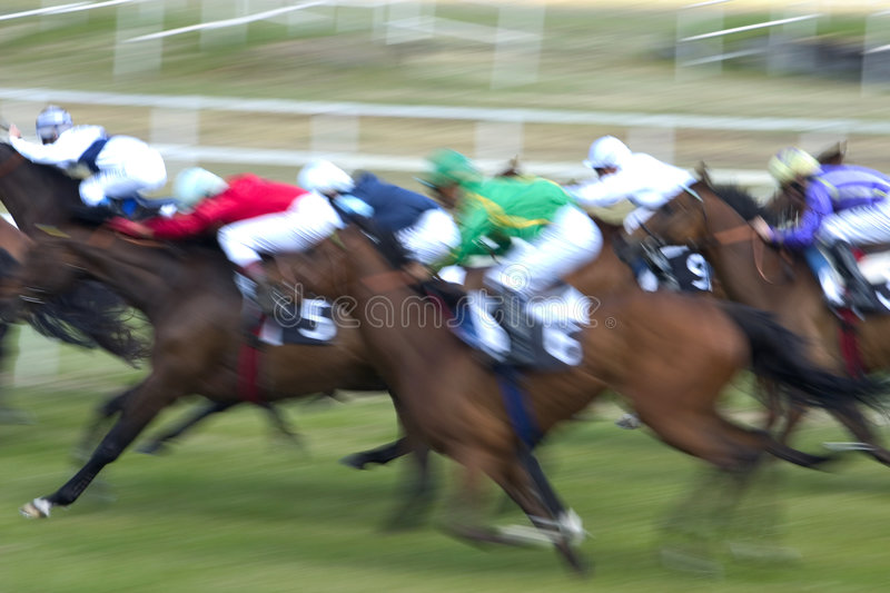 course de chevaux royalty free stock image