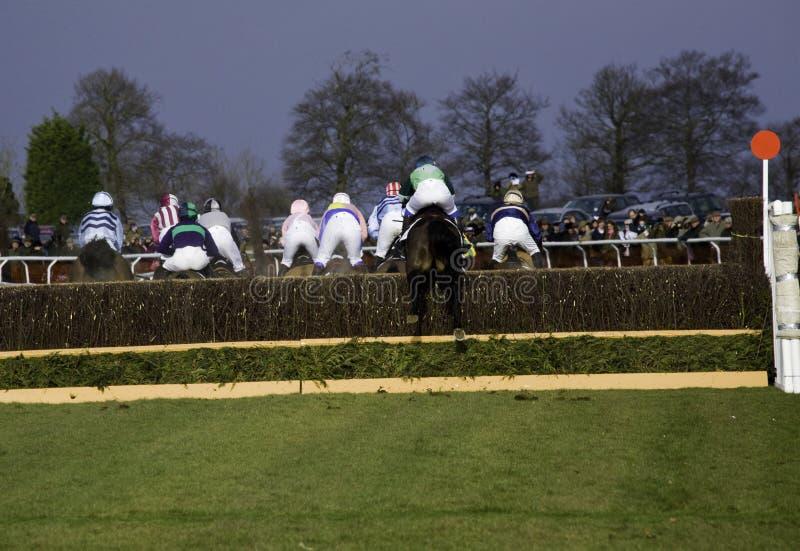 Course de chevaux point par point image stock