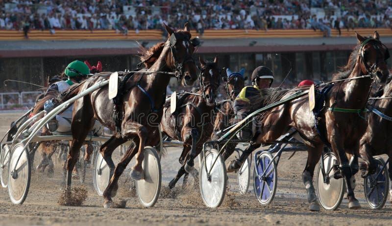 Course de harnais de cheval dans le détail d'hippodrome de Majorque photographie stock