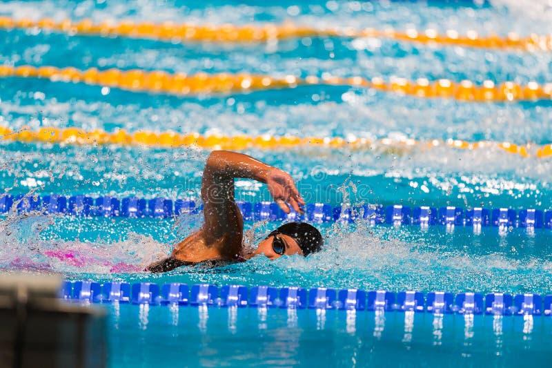 Course de natation de Frestyle photos stock