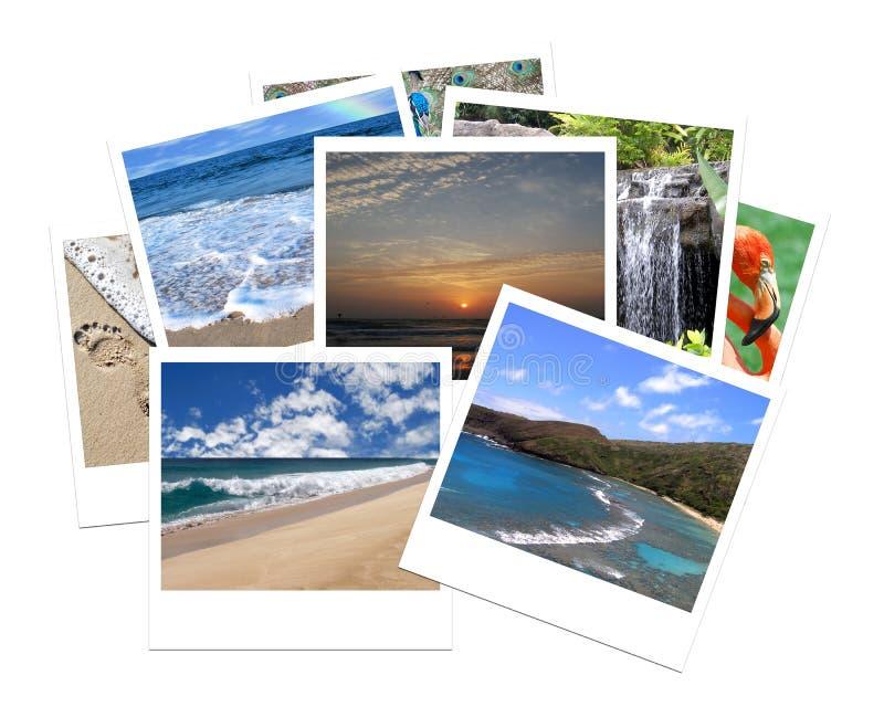 Course de vacances image libre de droits