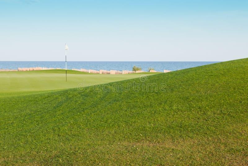 course golf royaltyfri fotografi