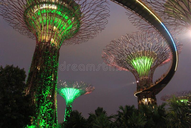 Course Singapour image libre de droits