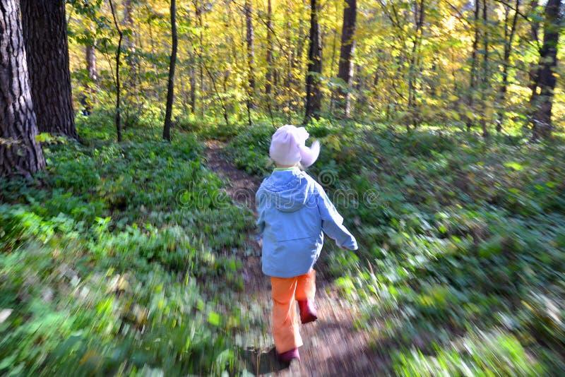 Courses d'enfant par la forêt photographie stock libre de droits