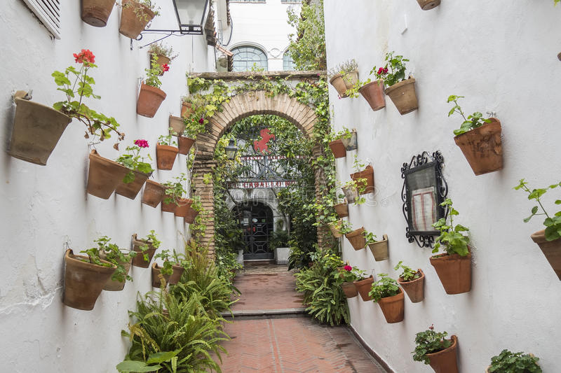 Courtyard decorated with geraniums, Cordoba, Spain stock photo