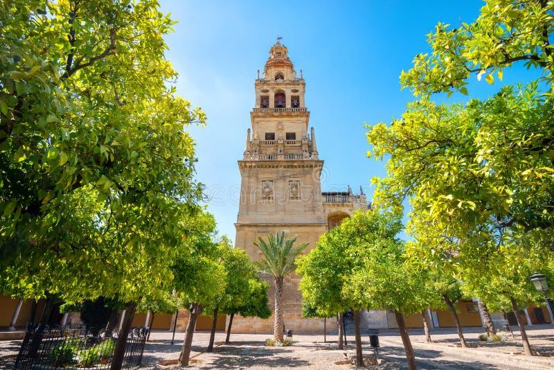 Courtyard en klokkentoren in de Mezquita Mosque Cathedral in Cordoba Andalusië, Spanje stock afbeelding