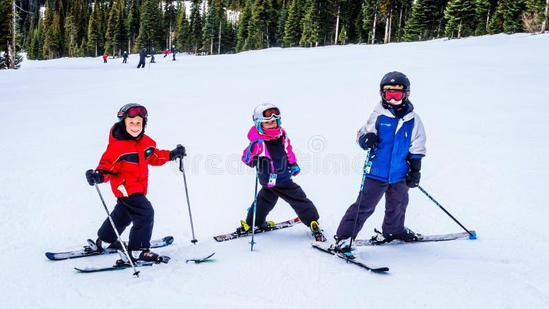 Cousins having fun skiing together at Sun Peaks ski resort stock image