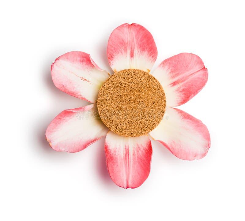 Coussin de base sur six pétales roses d'isolement sur le fond blanc images stock