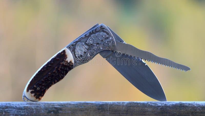 Couteau de poche de chasse avec les sangliers gravant photo stock