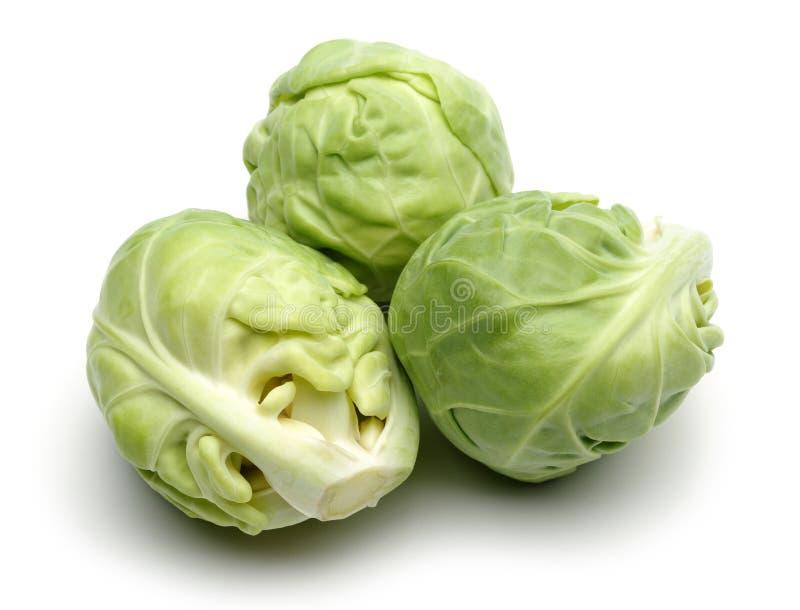 Couve-de-bruxelas, couve verde fresca imagens de stock