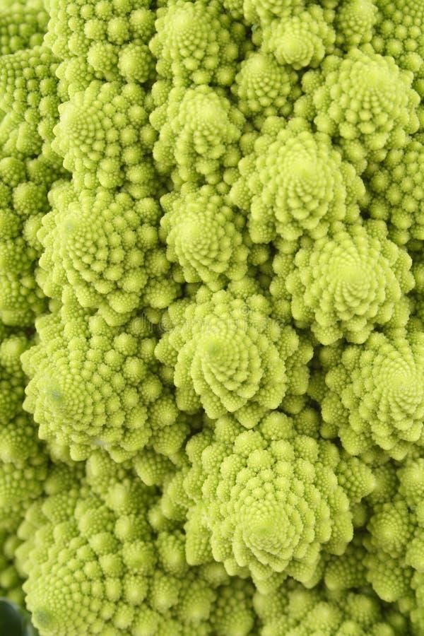 Couve-flor verde imagens de stock