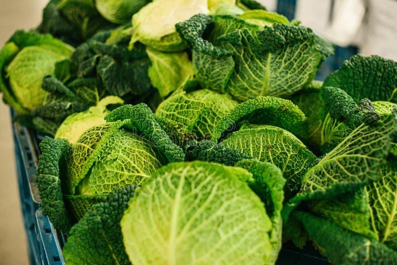 Couve fresca no mercado dos fazendeiros Produto dietético e do vegetariano Produtos locais naturais no mercado da exploração agrí fotos de stock royalty free