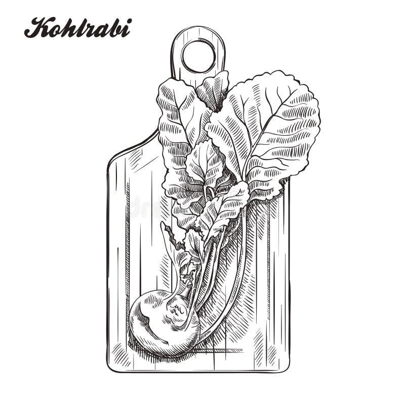 Couve-rábano em uma placa de corte Colheita esboço feito à mão ilustração stock