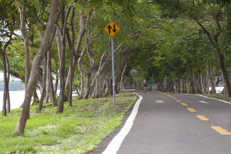 Couverture de route avec l'arbre image libre de droits