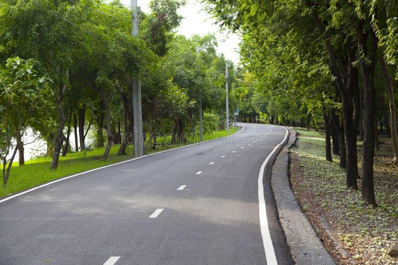 Couverture de route avec l'arbre images libres de droits