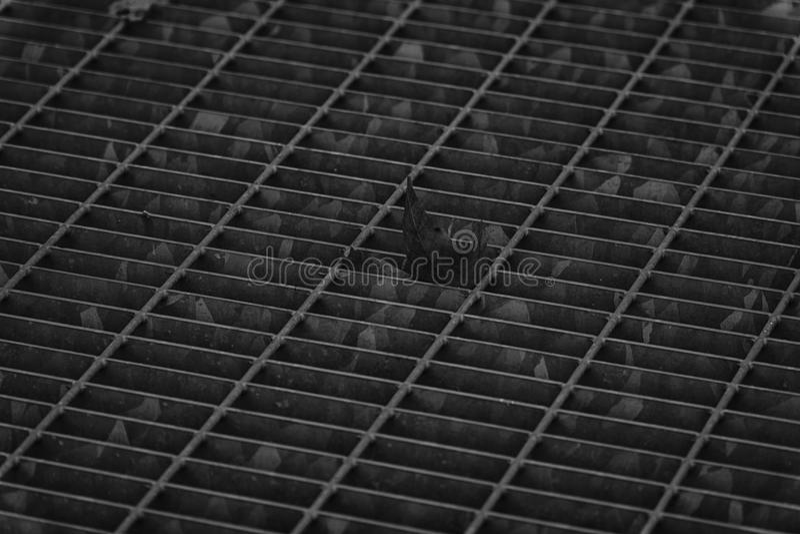 Covata quadrata monocromatica del metallo in pavimentazione urbana, copertura di botola della fogna con le linee della marcatura  immagine stock libera da diritti