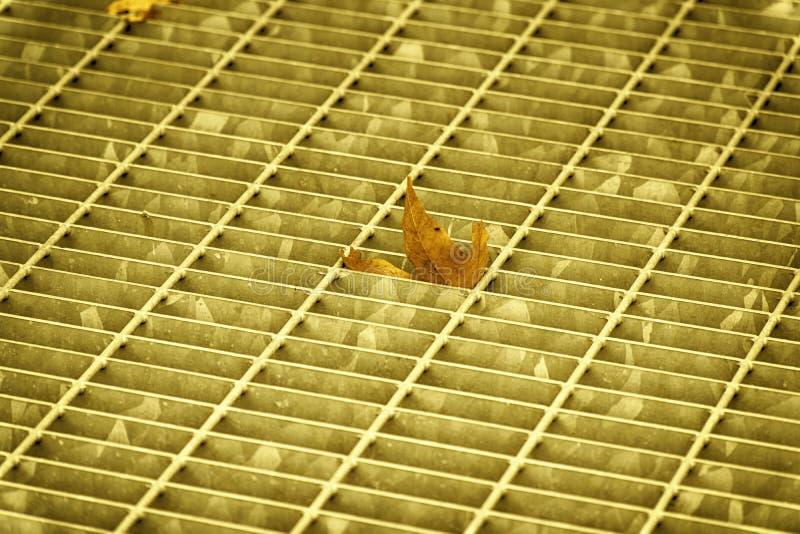 Covata quadrata ultra arancio del metallo in pavimentazione urbana, copertura di botola della fogna con le linee della marcatura  immagini stock