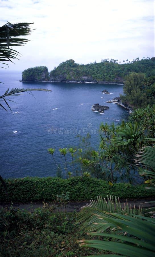 cove hawaii arkivfoton
