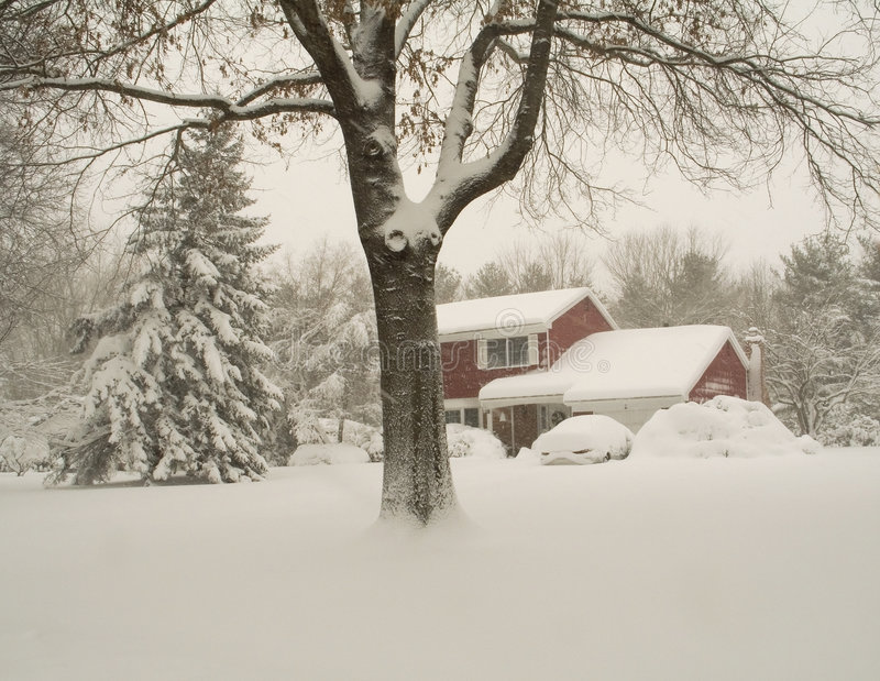 Download Covered stock photo. Image of cold, woods, residential - 512974
