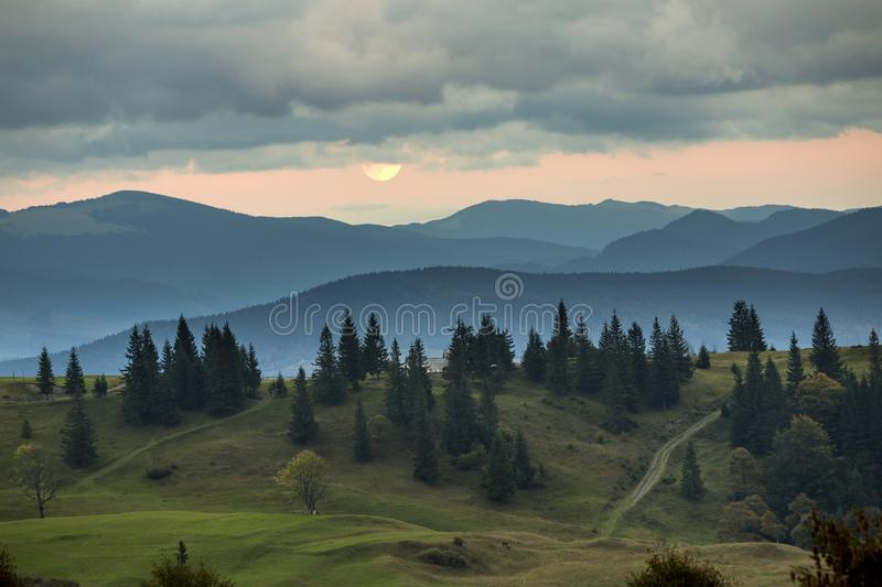 Covered with mist mountains at moonrise, big moon on bright orange sky over tall fir-trees stock images