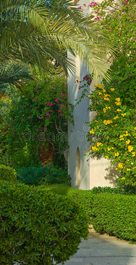 Download Covered with vegetation stock photo. Image of entrance - 14122762