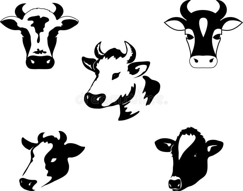 Cow. Element for design illustration