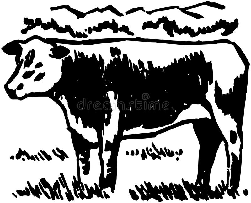 Cow stock illustration