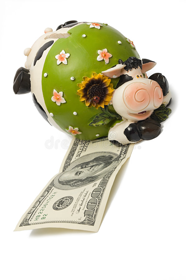 A cow bank. On top of one hundred dollar, symbol of 2009 year royalty free stock images