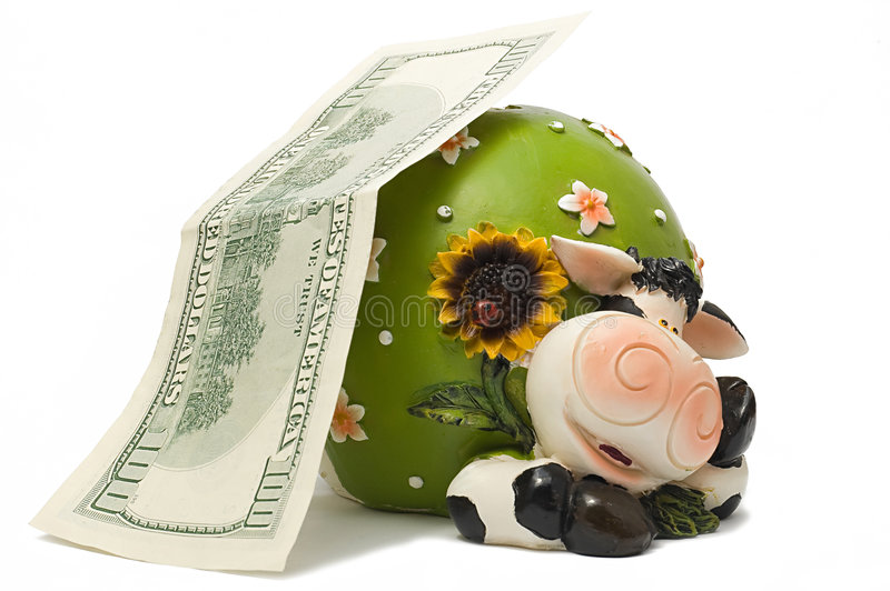 A Cow-coin box. Cow-coin box under hundred dollar denomination royalty free stock image