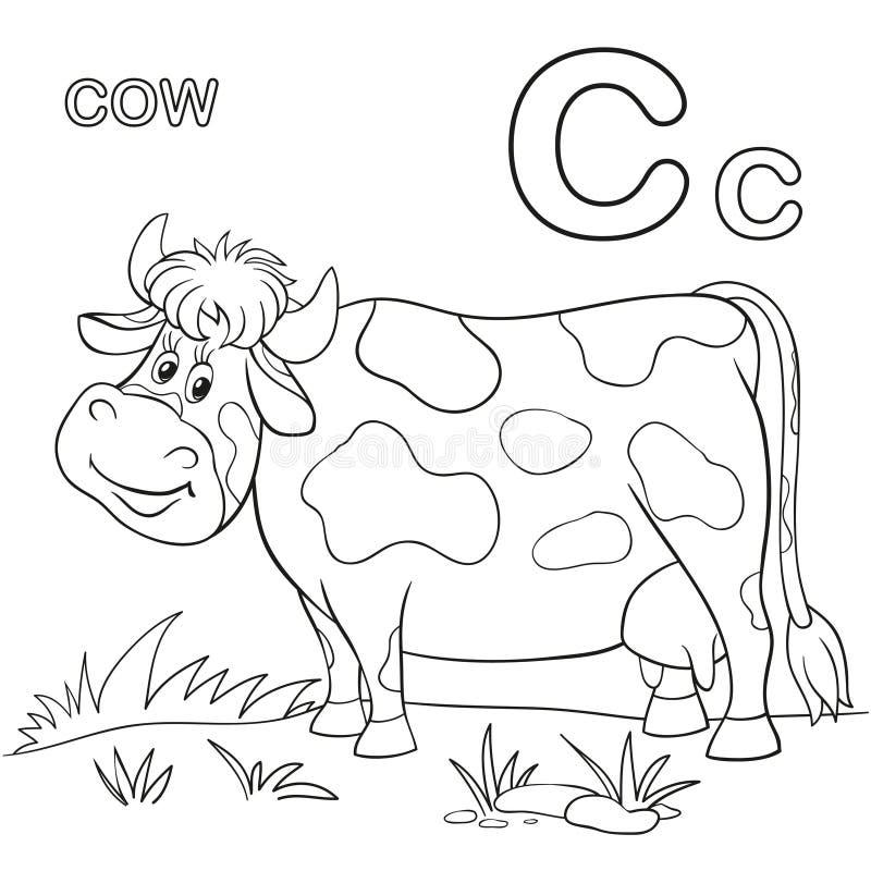 Cow vector illustration