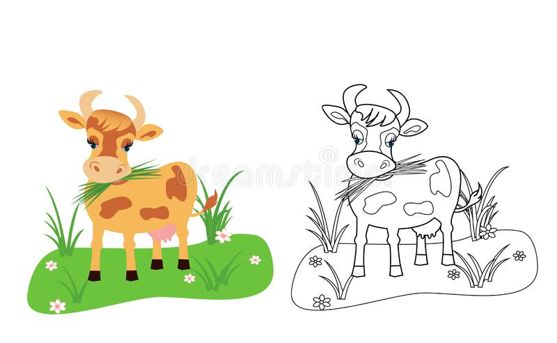 Cow coloring book for kids stock image