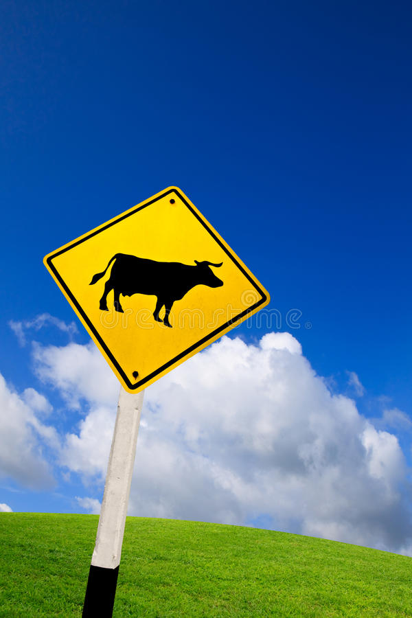 Free Cow Cross Road Royalty Free Stock Photography - 20828347