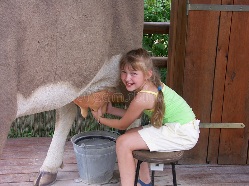Cow and girl 01 royalty free stock photos