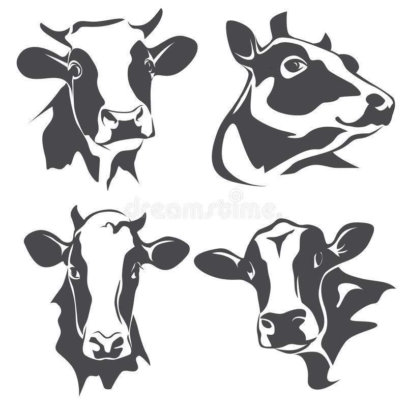 cow head portrait stock vector illustration of farmer