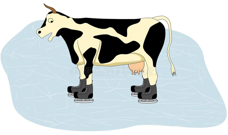 Cow on Ice. Cow ride on the ice in hockey skates vector illustration