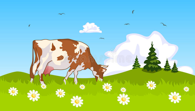Cow in the meadow at the edge of grove. Illustration vector illustration