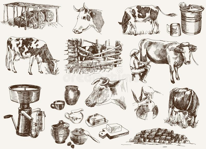 Cow and milk products stock illustration