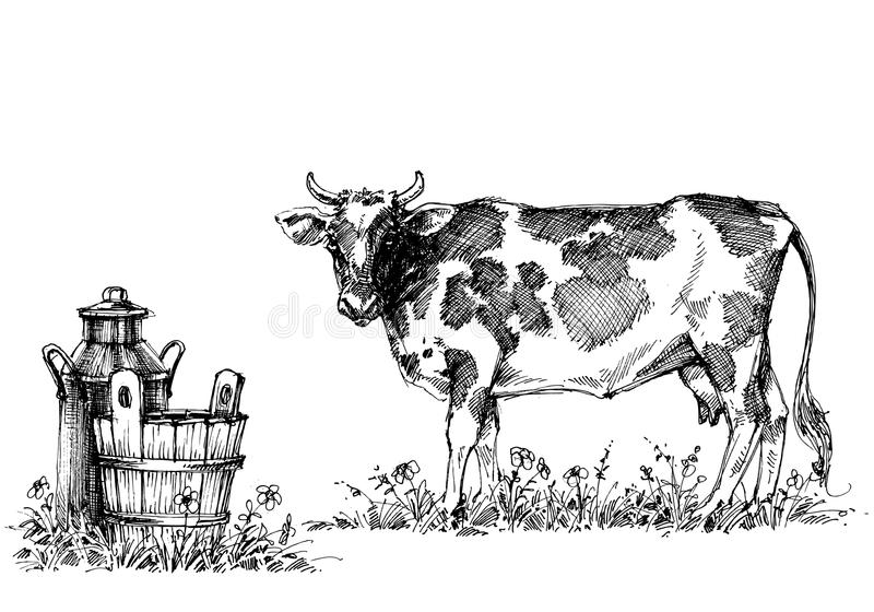 Cow and milk set. Cow and milk dairy set stock illustration