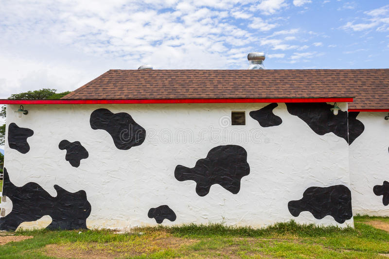 Cow pattern painted walls. Abstract Cow pattern painted walls royalty free stock photo