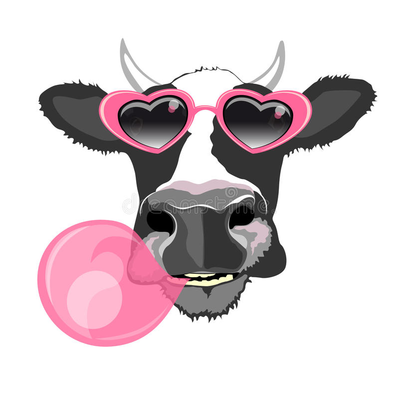 Cow portrait. In heart shaped sunglasses blowing pink bubble gum ball , vector illustration stock illustration