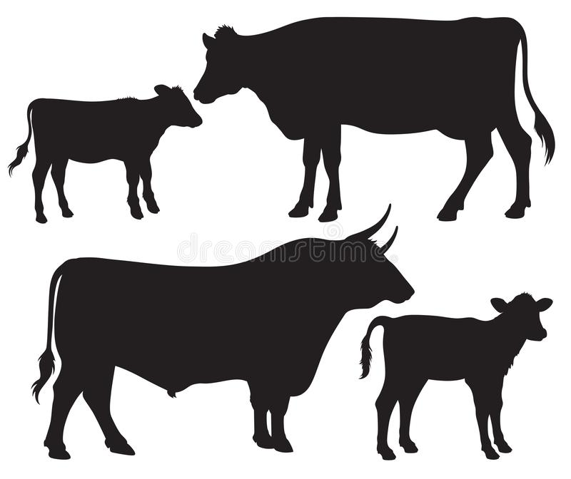 Black and white vector silhouettes of cattle vector illustration