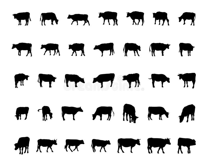 Cow silhouettes vector illustration
