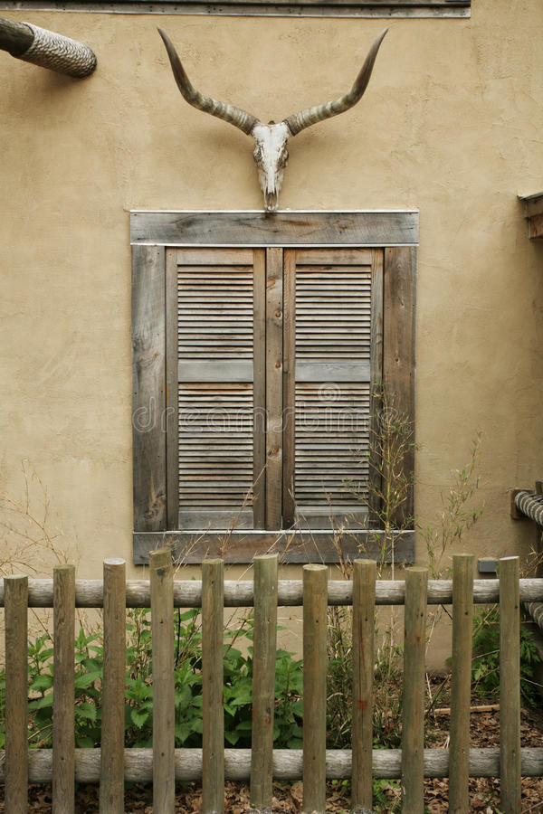 Cow Skull over Shuttered Window royalty free stock photos