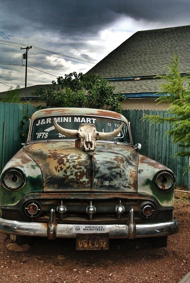 Cow Skull On Vintage Car Free Public Domain Cc0 Image