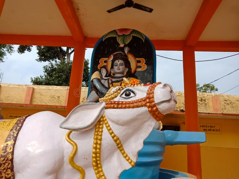 Cow statue kept infront of lord Shiva at Hindi temple royalty free stock photo