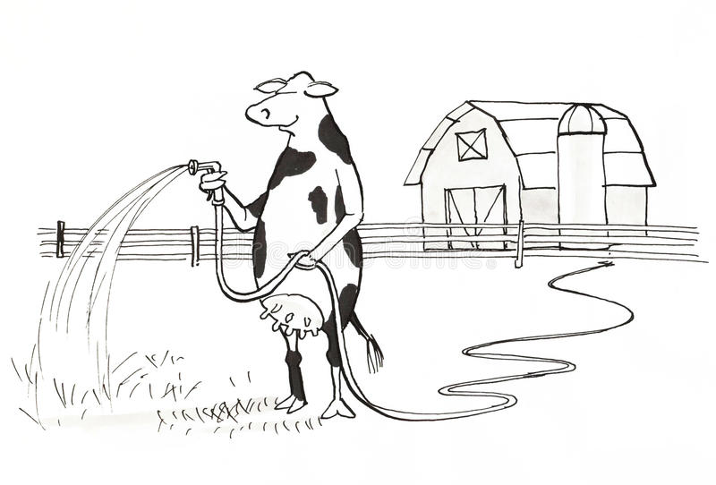 Cow watering royalty free illustration